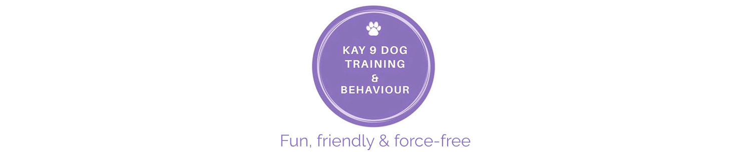 Kay 9 Dog Training